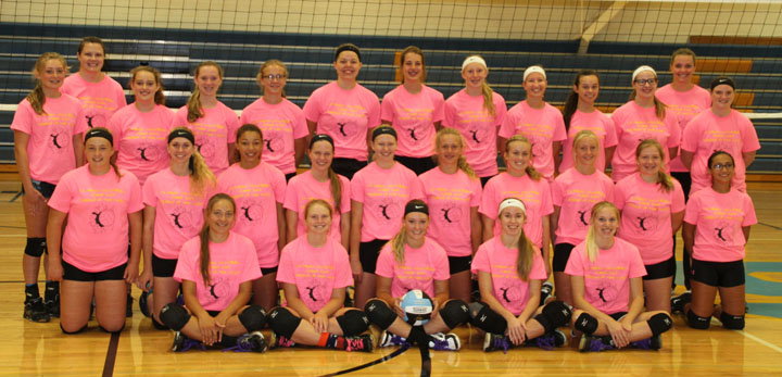 Volleyball Preview: Hawks hope plenty of off-season work pays off