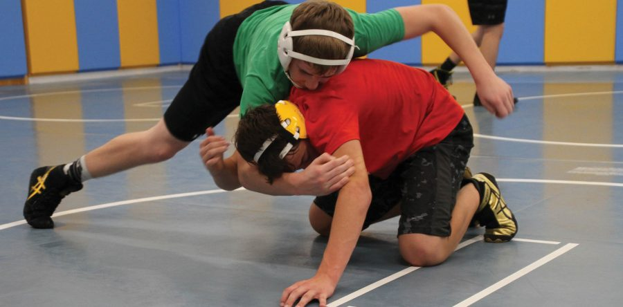 Two experienced seniors lead six-member wrestling team