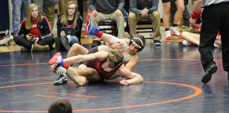 Three Hawk wrestlers earn milestone wins